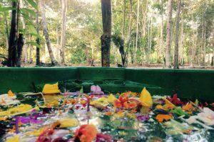 Flower Bath at Caya Shobo Ayahuasca Healing Retreat Centre, Iquitos, Peru