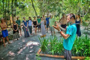 Plant Medicine Class at Caya Shobo