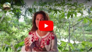 French Guest Review Caya Shobo