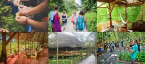 Image Gallery Caya Shobo Ayahuasca Retreat Center