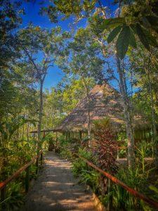 Maloka at Caya Shobo Ayahuasca Retreat Center